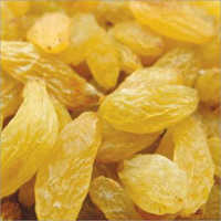 Jumbo Golden Raisins