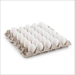 Poultry Paper Egg Tray