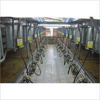 Herringbone Pipeline Milking Parlor