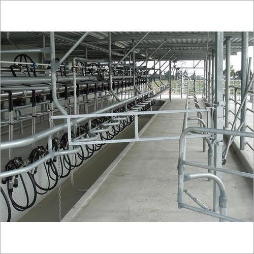 Dairy Farm Milking Parlor