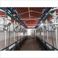 Herringbone Automatic Milking Parlor