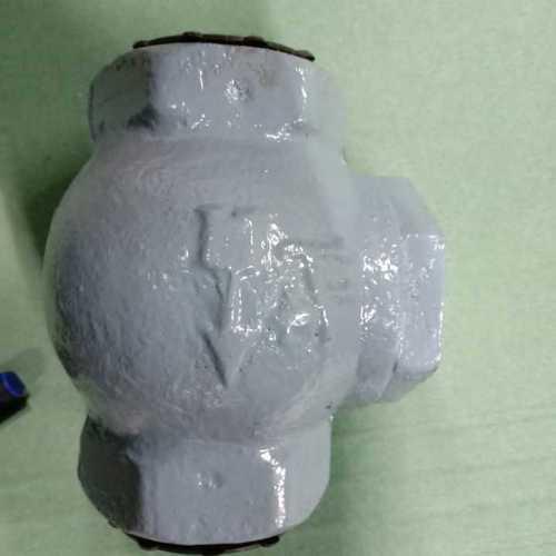 Check valve 1-1/4