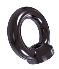 DIN582 Lifting Eye Nut