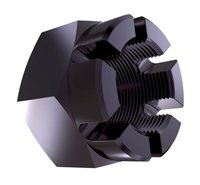DIN 935 Hexagon Castle Nut