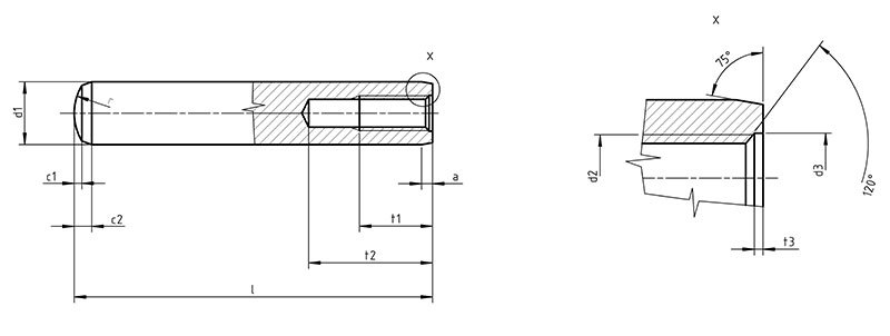 DIN 7979 Parallel Pin with Internal Thread
