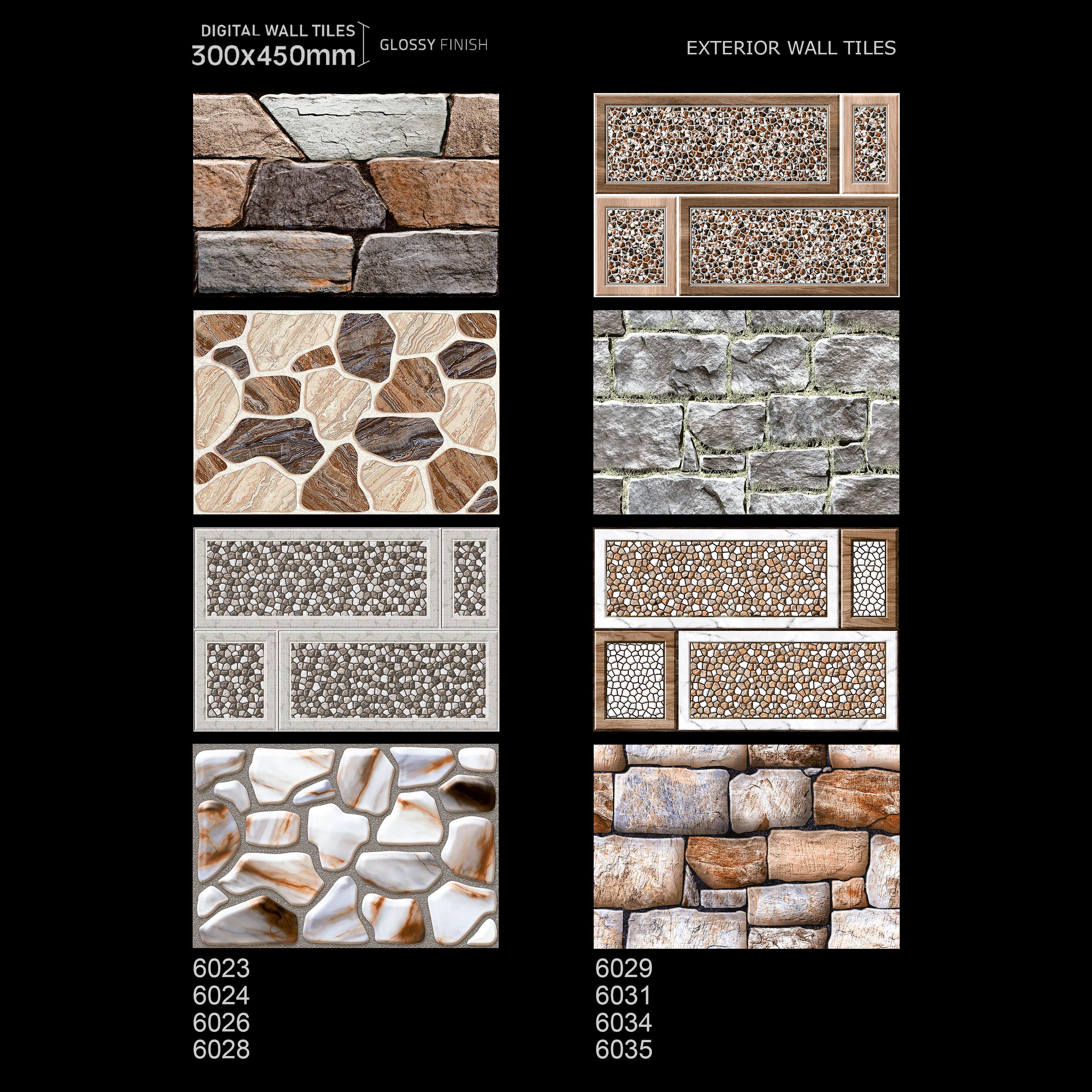 30 x 450 Wall Tiles