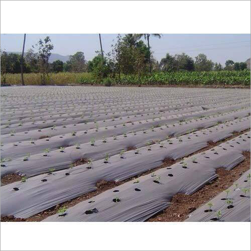 Agriculture Mulching Paper