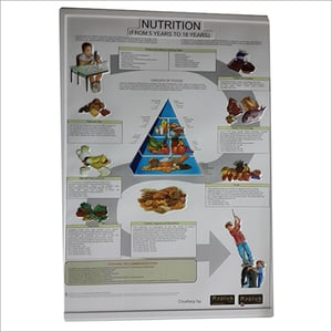 3D Embossed Nutrition Chart