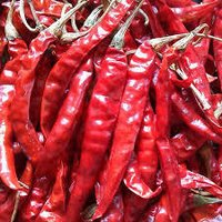 Dry Red Chilli Manufacturer & Exporter Of India
