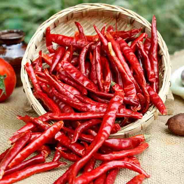 Indian Red Chilli Manufacturer & Exporter Of India