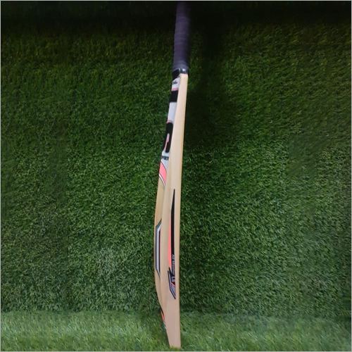 Kashmiri Long Cricket Bat