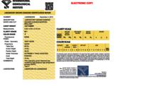 Cushion Modified Brilliant Cut 0.69Ct E Vs1 Igi Certified Cvd Type2A
