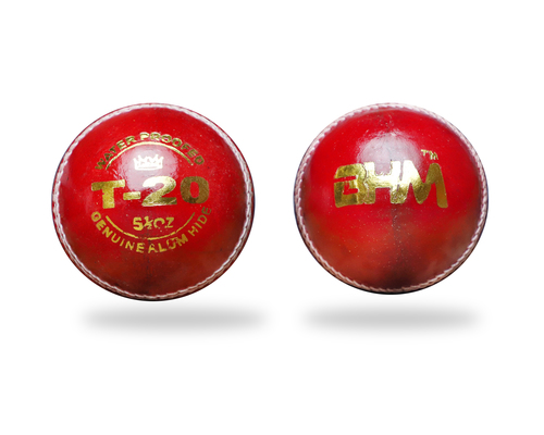 Cricket Leather Ball (T-20)
