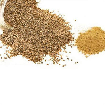 Ajwain Dry Extract Powder