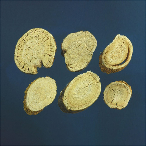 Radix Sophorae Flavescentis