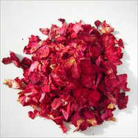 Rose Flower Petal