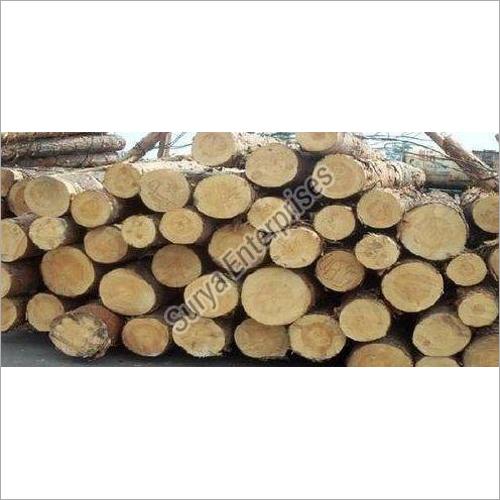 Southern Yellow Pinewood Logs