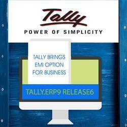 Customized Tally accounting software service