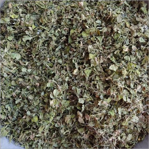 Normal Quality Fenugreek Leaf