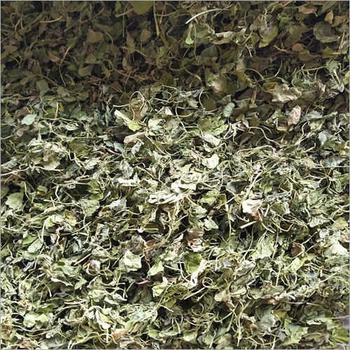High Quality Fenugreek Leaf