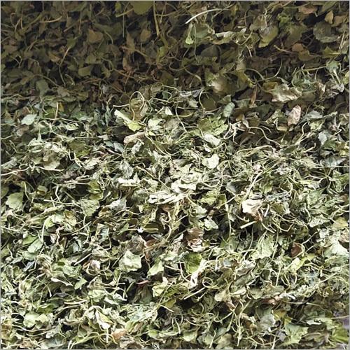 High Quality Fenugreek Leaf