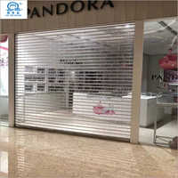 Visible Security Roller Shutter Door