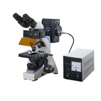 Flurorescent Research Microscope