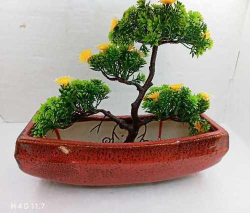 Tyres bonsai