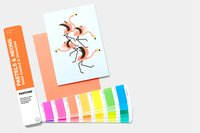 Pastels & Neons Guide   Coated & Uncoated