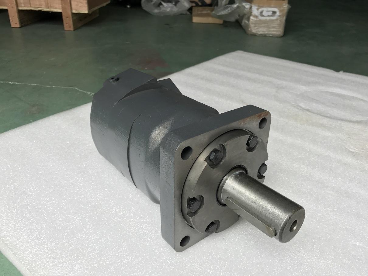 BMV Gear Motor