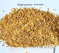 Ginger Granules Manufacturer Exporter India