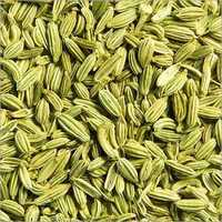 Fresh Fennel Seeds