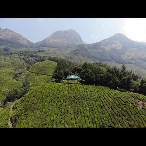 Gundumallay Tea Planters Bunglow near Munnar