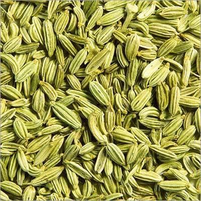 Fresh Fennel Seeds