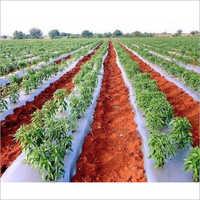 Farming Mulching Film