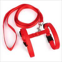 Nylon Webbing Dog Leash