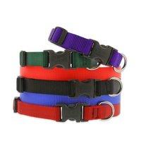 Nylon Webbing Dog Collar