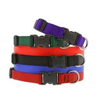 Nylon Dog Collar Webbing