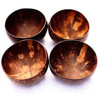 Cocunet Shell Bowl Set