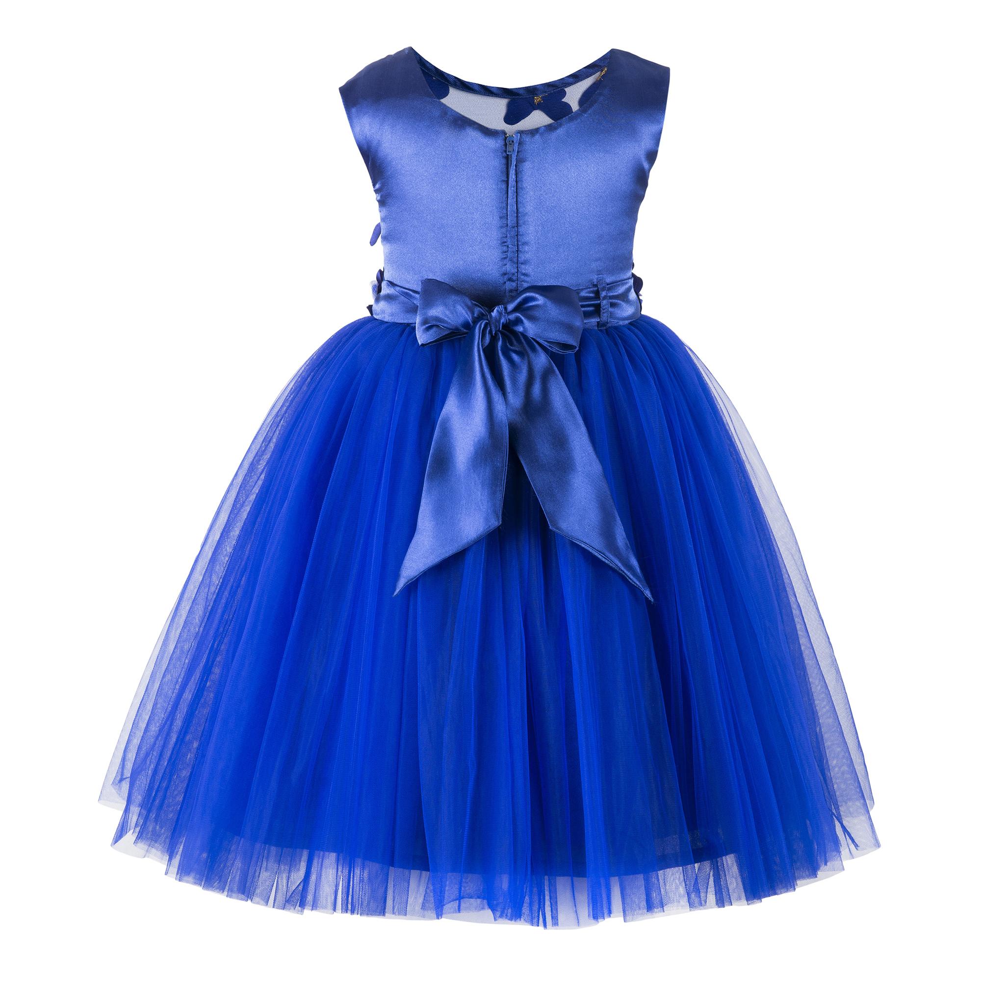 Butterfly  Blue Frock