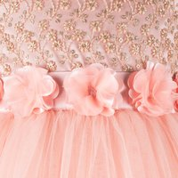 Floral Embroidered Peach Party Gown