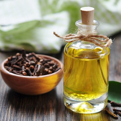 Clove Oil Age Group: Adults