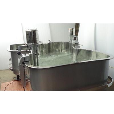 Hydrotherapy Tank Butterfly Shape Bath Pool