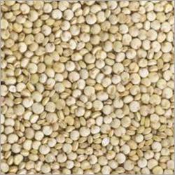 Premium Quinoa Seeds