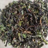 Green Dry Leaf Tea