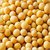 Non Gmo Dried Cheap Soybeans