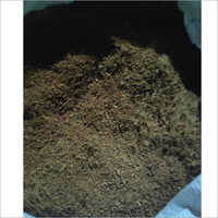 Cocopeat Germination Mix