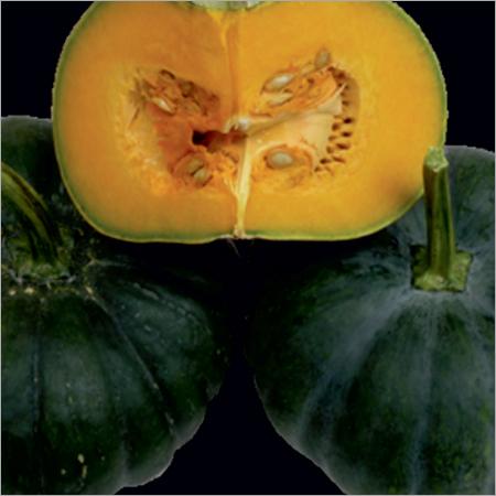 RAG-555 Prime Pumpkin Seeds