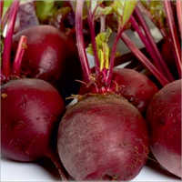FI- Star Red Prime Beetroot Seeds