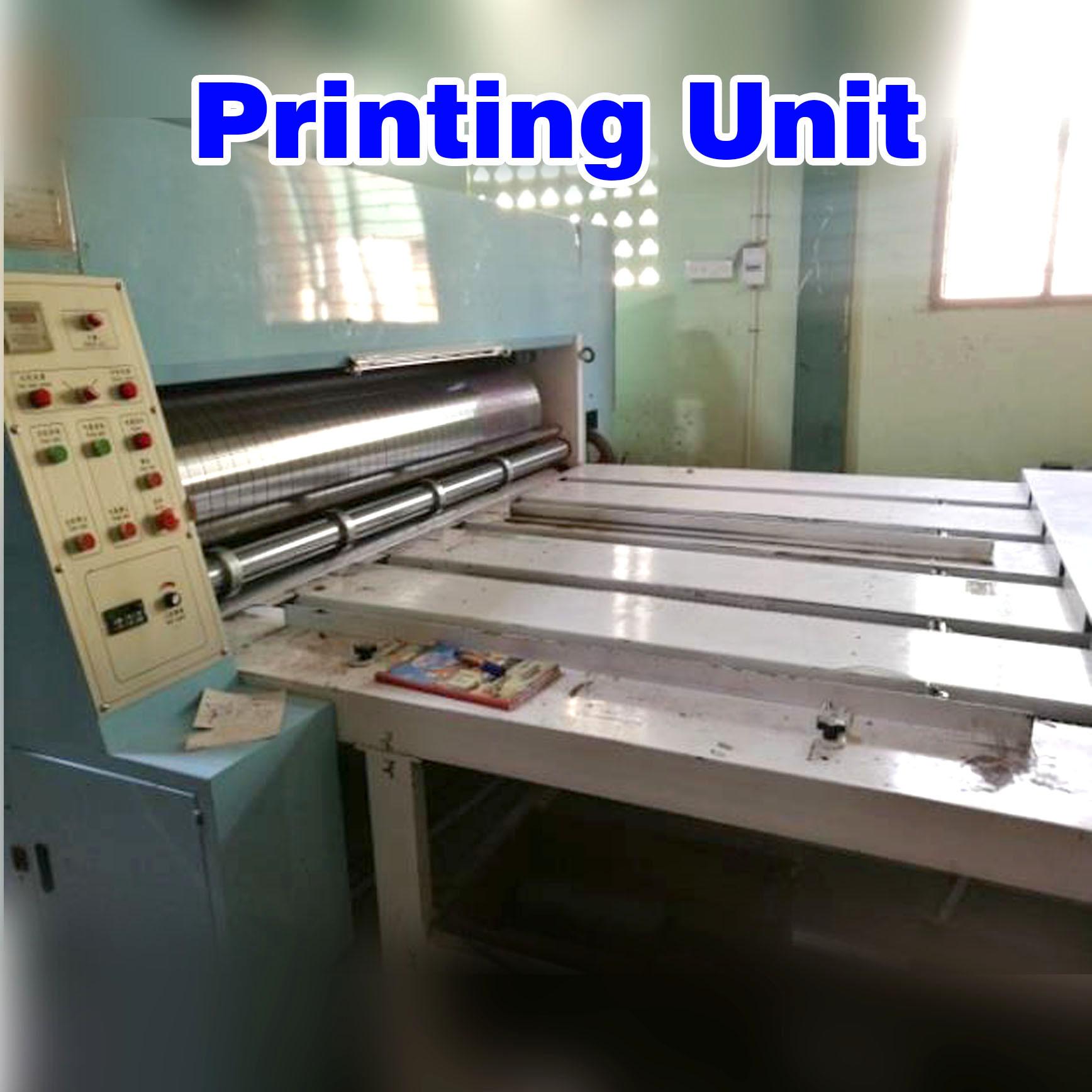 Chain Feeding 2 Color FLEXO Printing Rotary Die Cutting cum Creaser Slotter Machine